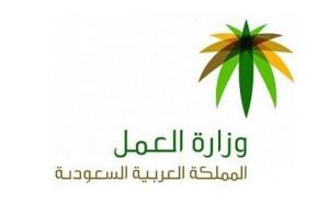 تفاصيل ضبط 213 مخالفة عمل في الرياض