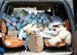 حرس الحدود يحبط تهريب أكثر من 2,5 طن قات بمنطقة جازان
