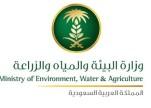 «البيئة»: إيقاف خدمات مُربي الإبل إذا لم يتم ترقيمها خلال عام