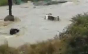 بالفيديو: معلمات رجال ألمع يصارعن الموت بعد أن جرفتهن السيول