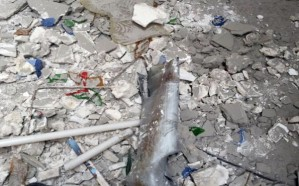 إصابة مقيمة جراء سقوط «مقذوف حوثي» على نجران
