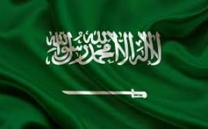 المملكة تعلن عدم اتفاقها مع تقرير الأمين العام للأمم المتحدة حول عقوبة الإعدام