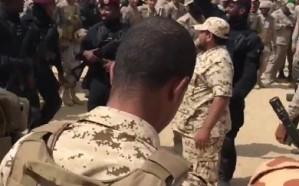 فيديو.. احتفالات الأبطال بانتصاراتهم في الحديدة