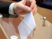 وفد الكوميسا : مناخ الانتخابات الرئاسية المصرية كان جيداً