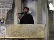 جماعة أنصار بيت المقدس المصرية تعلن الانضمام للدولة الإسلامية ومبايعة البغدادي