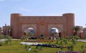 وظائف للسعوديين في جامعة الملك فيصل