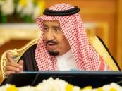 مجلس الوزراء يوافق على الترتيبات التنظيمية لنادي الإبل