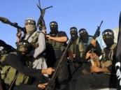المرصد السوري: تنظيم الدولة الإسلامية يتوغل في كوباني
