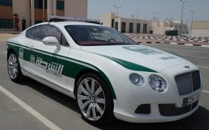 شرطة دبي تقبض على المتورطين في فيديو افتراس كلاب لقطة حية