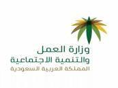 ضبط 60 مخالفة عمل في الرياض