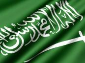 المملكة تدعو إلى تسريع الجهود لاحتواء الأثر الكارثي لـ«كورونا»