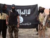 فيديو.. تركيا تعطي الأمان لعناصر داعش!