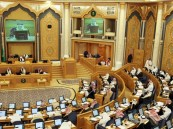 الشورى يطالب بضبط منظومة العمل الحكومي وعقوبات ضد إعلانات المشاهير المضللة