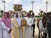 محافظ الطائف يرعى ختام بطولة الإنتاج المحلي لجمال الخيل العربية