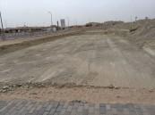 «الإسكان»: تسليم أراضٍ للمواطنين دون مقابل في 55 محافظة ومدينة