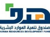 (هدف) يوحد برامج دعم التوظيف والتدريب ضمن بوابة وطنية شاملة