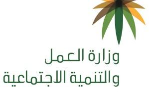 ضبط 203 مخالفات عمل في الرياض