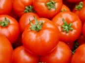 دراسة.. الطماطم تؤخر عوامل الشيخوخة