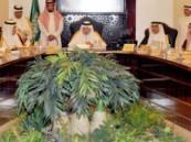 الفيصل يقر تشكيل لجنة للتنسيق بين القطاعين الحكومي والأهلي