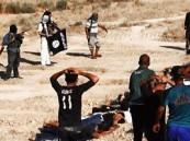"""وزير ألمانى يتهم قطر بتمويل مقاتلى """"داعش"""" فى العراق"""