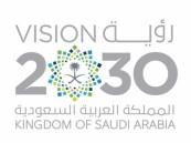 مجلس الشؤون الاقتصادية يعلن اطلاق 10 برامج جديدة لتحقيق رؤية 2020 ويحدد آلية للمساءلة