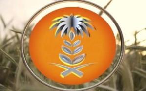 «الحبوب» تطرح مناقصة لاستيراد 660 ألف طن شعير علفي