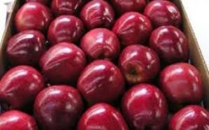 تناول التفاح يوميًا يقي من السرطان