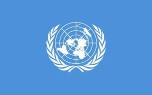 الأمم المتحدة تشكر المملكة والإمارات