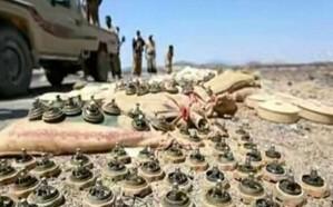 نزع 500 لغم وعبوة ناسفة في المناطق المحررة من صعدة اليمنية