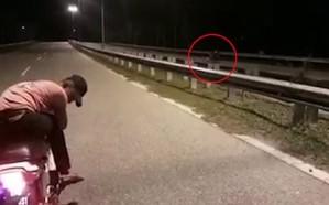 فيديو.. شبح يقود دراجة نارية يثير ضجة.. هكذا علق النشطاء