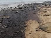 إزالة التلوث النفطي من كورنيش الخبر