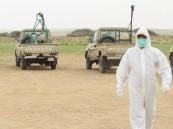 """""""البيئة"""" تكافح الجراد الصحراوي على مساحة 20 ألف هكتار خلال شهر"""