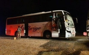بالصور.. وفاة وإصابة 53 شخص إثر اصطدام جمال سائبة بحافلة معتمرين