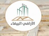 """""""الأراضي البيضاء"""" تصدر 147 قراراً جديداً على مخالفي النظام واللائحة التنفيذية"""
