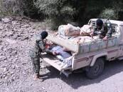 دوريات الأفواج تحبط تهريب كمية من المخدرات والأسلحة