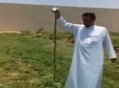 شاهد.. مواطن يقتل أفعى في مزرعته بالدلم