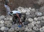 إتلاف 500 لغم أرضي زرعتها مليشيا الحوثي في شرق حرض