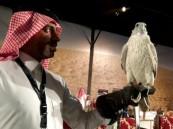 ملتقى عالمي في الرياض لعروض الصقور والصيد السعودي