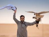 617 فائزاً في مهرجان الملك عبدالعزيز للصقور بنسخته الثانية