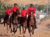 انطلاق كأس خادم الحرمين لسباق القدرة والتحمل 2020 غرة فبراير