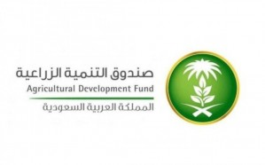 صندوق التنمية الزراعية تعلن تأجيل الأقساط المستحقة 6 أشهر