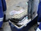 مصادرة 6 أطنان أسماك ولحوم فاسدة بجدة