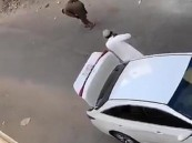 القبض على مواطن أطلق النار على آخر من سلاح رشاش