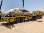 فيديو.. لحظة انتشال حوت ضخم نافق من مياه الكويت
