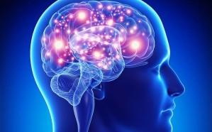 دراسة بريطانية تحدد مخاطر فيروس كورونا على المخ
