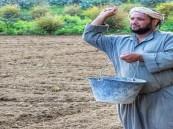 """المزارع السعيد """"الحشري"""" يتحدث لـ""""رصدنيوز"""" ويسلّط  الضوء على الصعوبات التي تواجهه"""