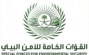 الأمن البيئي تضبط (3) مخالفين بحوزتهم حطب محلي معد للبيع جنوب الرياض