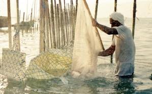 توفر 3 آلاف وظيفة.. «البيئة» توضح مزايا توطين مهنة الصيد