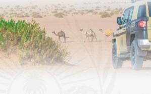الأمن البيئي يوقف 55 مخالفًا لرعيهم بمواقع يمنع فيها الرعى