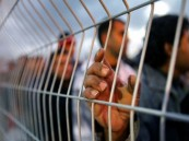الأمم المتحدة تطالب الكنيست الإسرائيلي بعدم اعتماد قانون التغذية القسرية للمعتقلين الفلسطينيين
